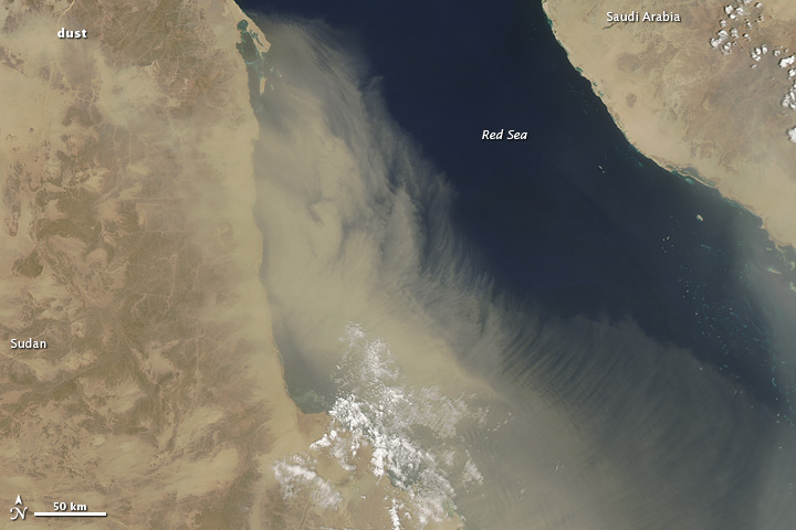 Egypt insists it isn't meddling in Red Sea crisis, doesn't
